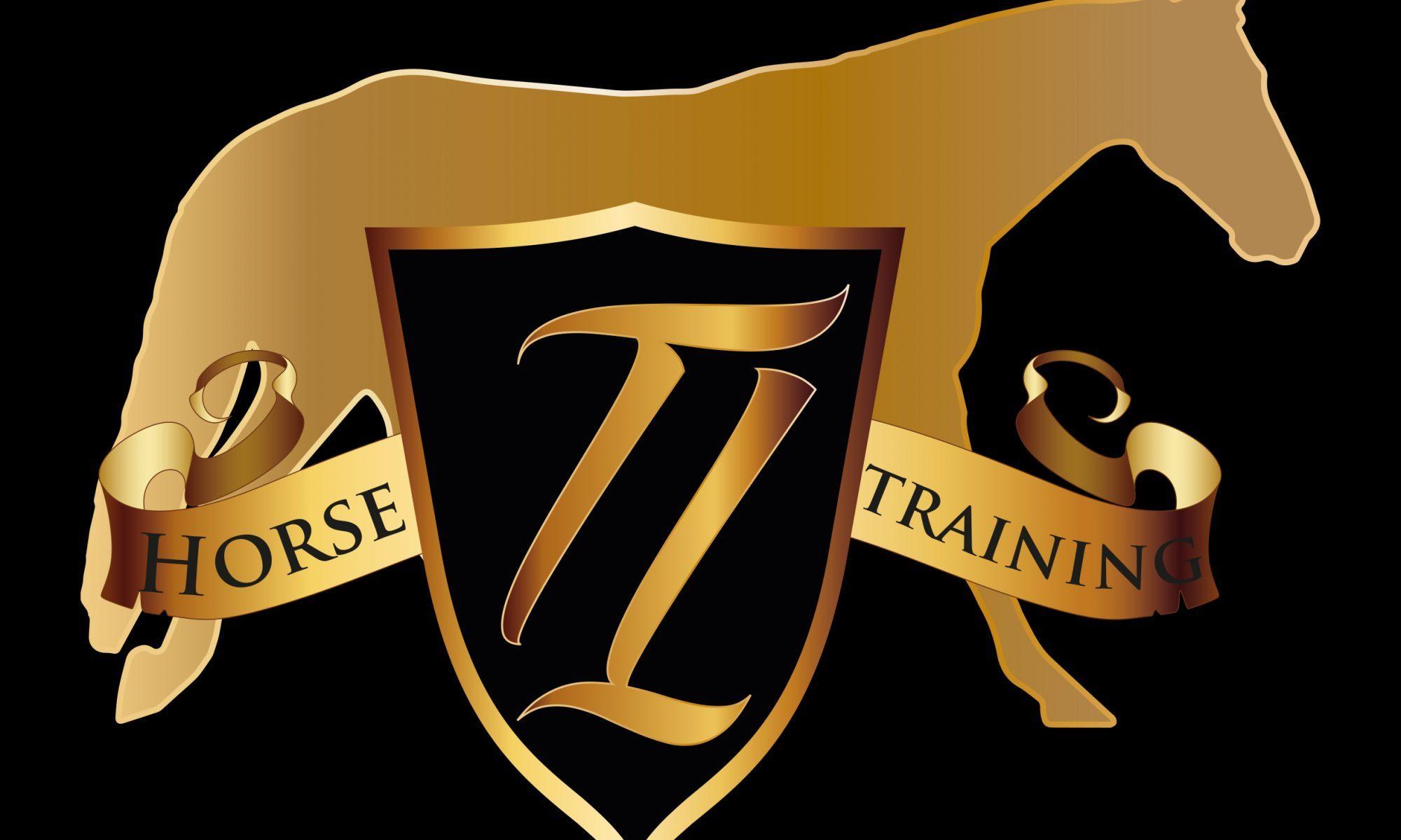 TL Horsetraining
